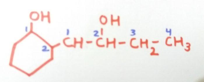 2-(2-Hydroxylbut-1-yl)cyclohexan-1-ol