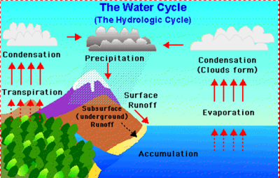 Water Cycle Class 9 Natural Resources