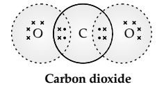 Chapter 4 Carbon and its Compounds (1)