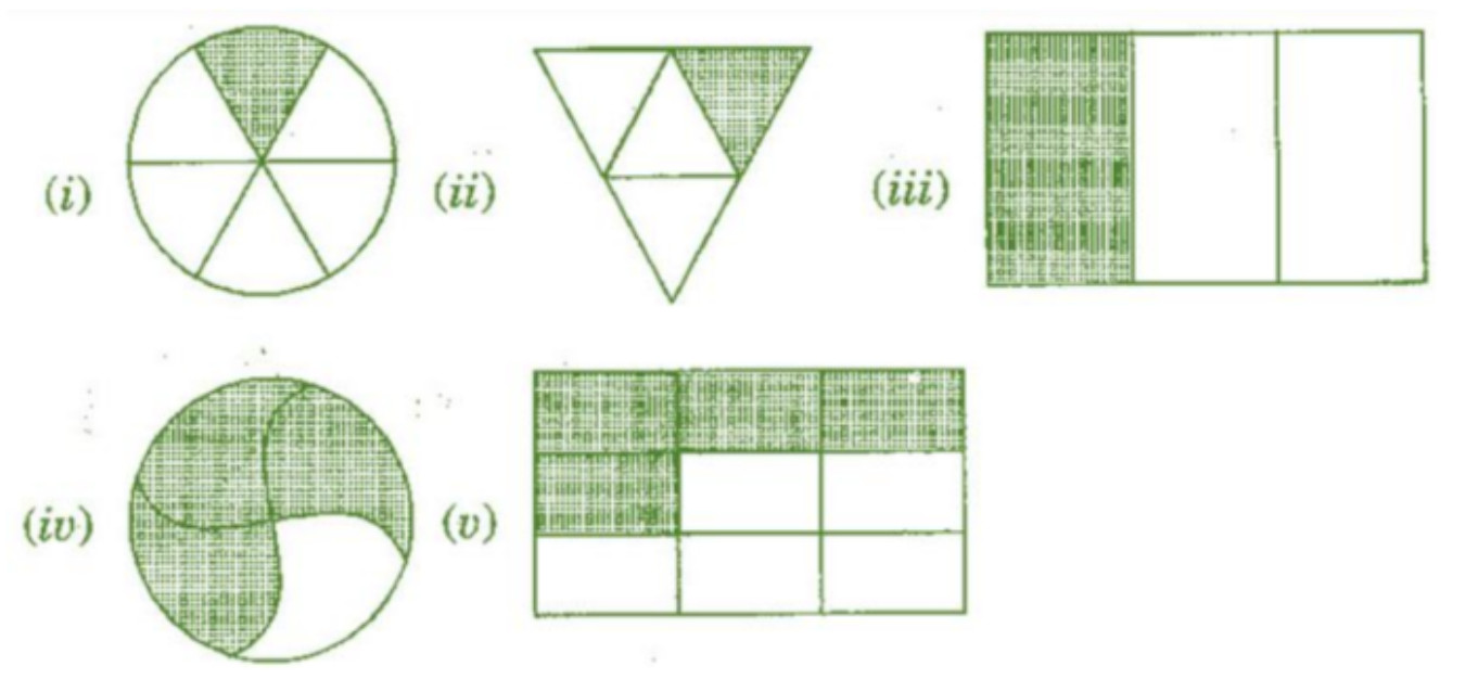 Chapter 7 Fractions Class 6 (3)