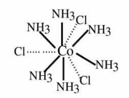structure of [Co(NH3)6]Cl3