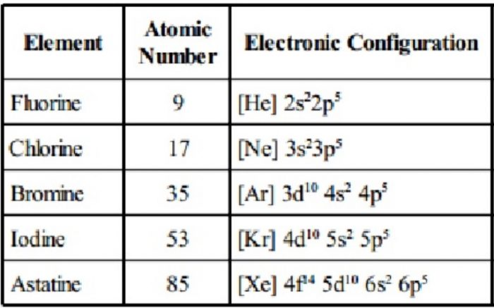 Electronic configuration of group 17 element