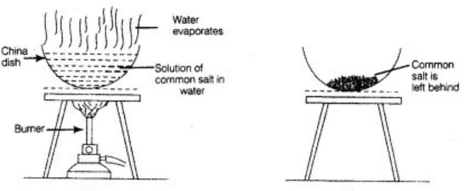 evaporation  distillation