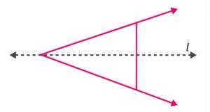 Ex 13.1 Class 6 Maths Answer 5