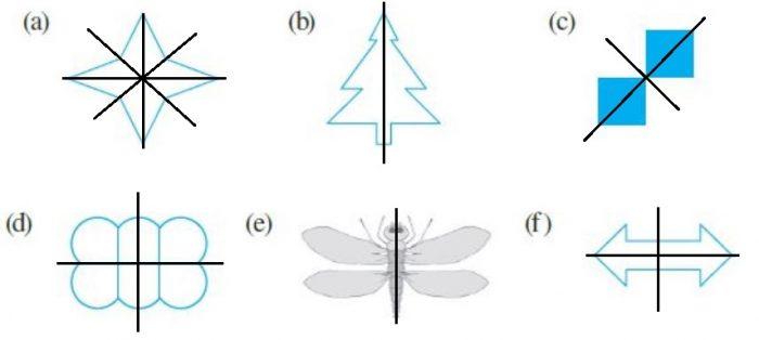 Ex 13.3 Class 6 Maths Answer 1