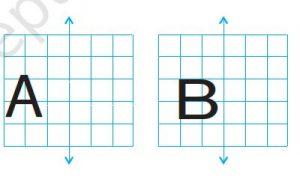 Ex 13.3 Class 6 Maths Question 3