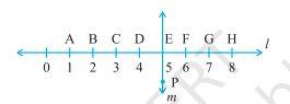 Ex 5.5 Maths Class 6