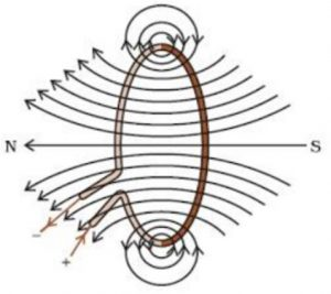 Magnetic field due to a Current through Circular loop