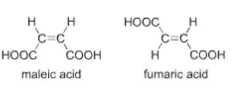 Maleic acid and fumaric acid