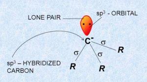 Orbital structure of carbanion