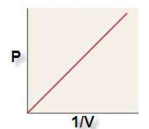 P vs 1:V graph