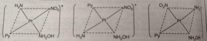 [Pt(NO2)py (NH2OH)(NH3)]+