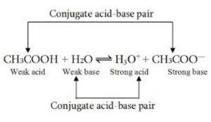 Reaction between acetic acid and water