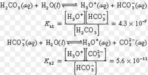 dissociation of carbonic acid