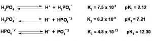 dissociation of phosphoric acid