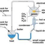 Stanley L. Miller and Harold C. Urey experiment