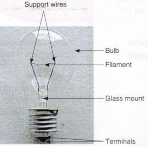 Torch bulb