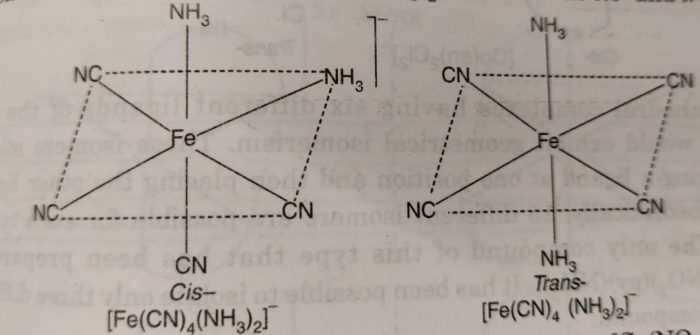 cis and trans isomer of [Fe(CN)4(NH3)2]-