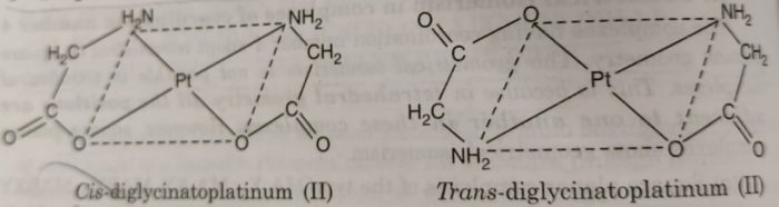 cis and trans isomers of [Pt)gly)2]