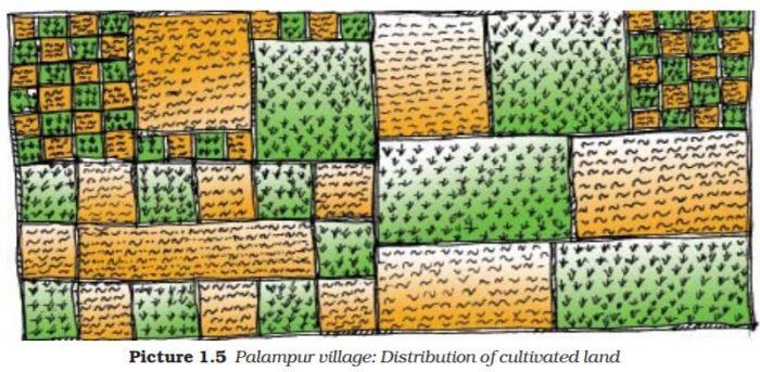 ncert-solutions-class-9-economics-chapter-1-story-village-palampur-page-7-Q-1