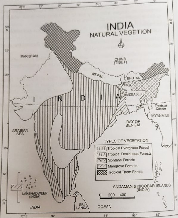ncert-solutions-class-9-geography-chapter-5-natural-vegetation-wildlife-map-skills-page-52