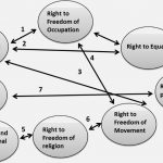 ncert-solutions-class-9-political-science-chapter-6-democratic-rights-112-Q-10