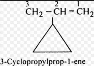 side chain has double bond