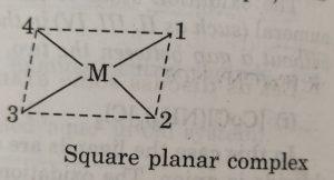 square planar complex